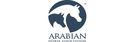 AHA - Logo